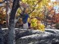 Tree Climb 2010
