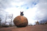 Elephant Rocks November 2 2014 006copy