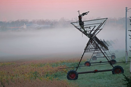 november-4-2016-equipment-sunrise-color-and-fog